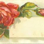 Belle's Box – 57