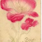 Belle's Box – 69